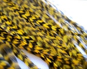 10 SHORTER YELLOW Feathers for Feather Extensions & 3 extensions beads