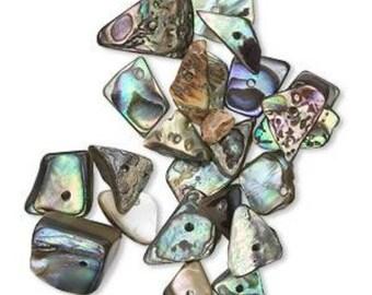5 Paua Shell Beads for Charms / Pendants