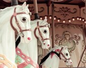 carousel print - carnival nursery decor horses pink light feminine fine art nature serene- 4x6 signed