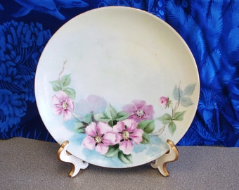 Antique M Z Austria Porcelain Hand Painted Plate.
