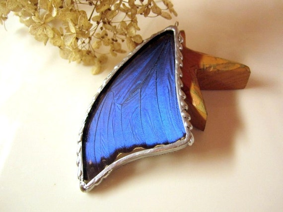 Real Butterfly Pendant, Large Blue Morpho Menelaus, Butterfly Jewelry