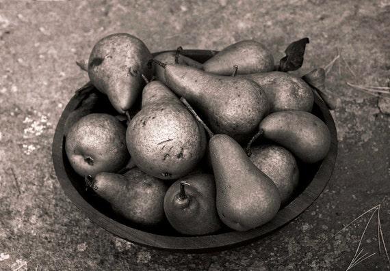 Pears, 8x10 fine art black & white photograph