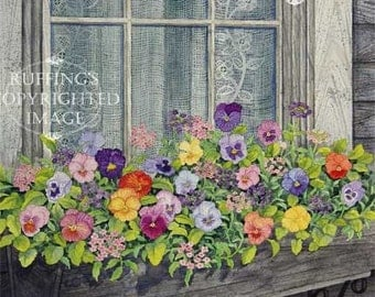 Window Box with Pansies Pansy Floral Giclee Fine Art Print, Blue Orange Yellow Green, Signed Elizabeth Ruffing, on 8.5 x 11 inch art paper