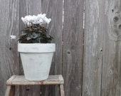 planter pot pottery green painted washed cottage shabby chic pastel mother's day gift vintage