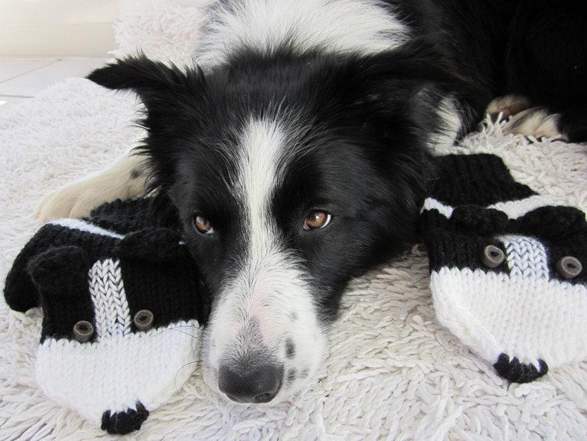Border Collie Knitting Pattern : Border Collie mittens gloves black and white gloves animals