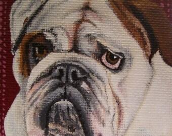 English Bulldog Acrylic Miniature Painting with Easel