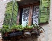 Green Shutters and Herbs, Italian Window, 11x14 Fine Art Photograph, herb garden sage moss green