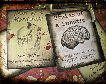 SALE - Murderess and Lunatic - Sticker Labels