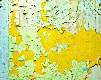 Distressed Wall Art Peeling Paint Photograph yellow green blue