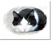 """Tuxedo Cat Card """"I'm A Bored Cat"""" (5.5x4.25) blank"""