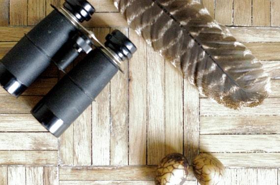 Vintage Royal American Binoculars