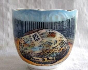 Vintage Souvenir Cup- Plymouth Rock