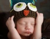 Owl Hat for Newborn Boy - Organic Cotton and Superwash wool