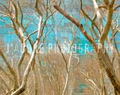 8x10/8x12 Photograph - 'Dichotomy II' - Bryant Park, New York City