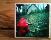 "Red Hydrant Photo Block 4"" X 4"""