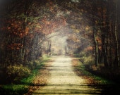 Autumn Landscape Photography, Autumn Wall Art, Fall Photography, Country Chic, Autumn Leaves Picture, Farmhouse Decor, Country Road Art.