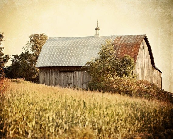 Rustic Barn Landscape, Autumn Wall Art, Farmhouse Decor, Warm Gold Barn Print, Horizontal, Large Wall Art, Farmhouse Decor, Country Art.