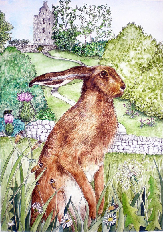 Scottish Hare and castle - A4 print