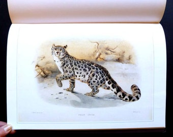 Mammals: Classic Natural History Prints, 60 stunning oversize color plates