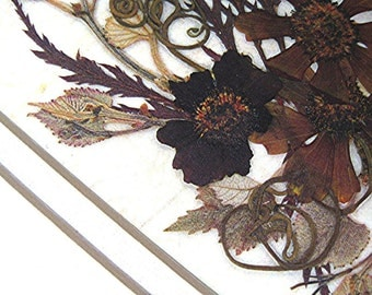 Earth Tones Brown Rust REPRODUCTION Pressed Flowers Neutrals Vines Tendrils