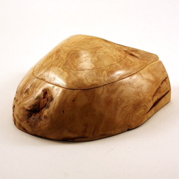 Maple Burl Box - contemporary - interior decoration - hand crafted