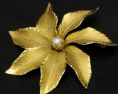 Binder Brothers Brooch Pin GoldFilled Pearl Center