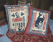 Small Home Decor Pillows (set of 2)-- Rodeo