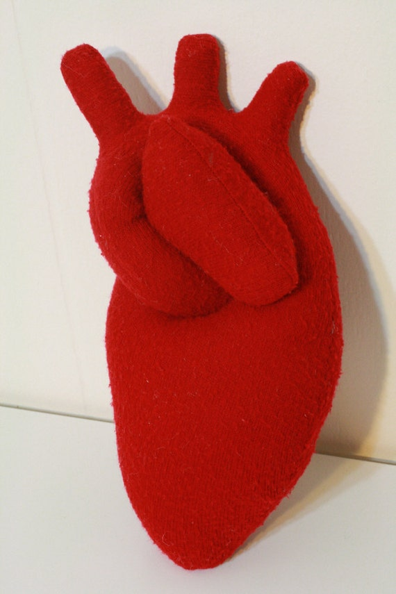 Anatomically correct-ish plush heart