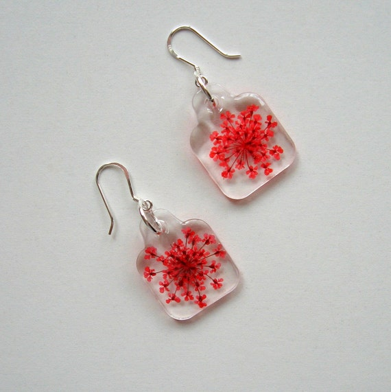 Red Queen Anne's Lace - Charmed Real Flower Earrings
