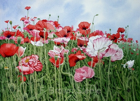 Painting My World: Pink Poppies 9x9 acrylic |Watercolor Poppies Pink