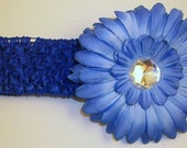 Baby Blue Gerber Daisy Bling Clip w/ Matching Crocheted Headband