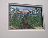 Original watercolor Grandfather Vine...