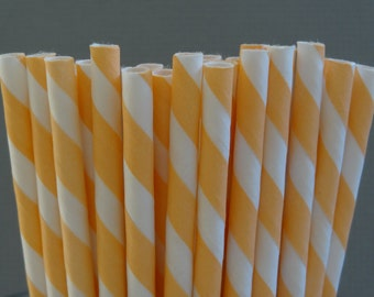 NEW to Serendipity Party Shop- PEACH Striped Paper Straws