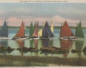 Rainbow Fleet Becalmed, Nantucket postcard. Gardiner Nantuckrome