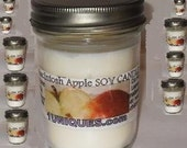 Bulk set of 10 You Pick  Scents Soy Candle 8 oz wholesale jelly jar with  lid