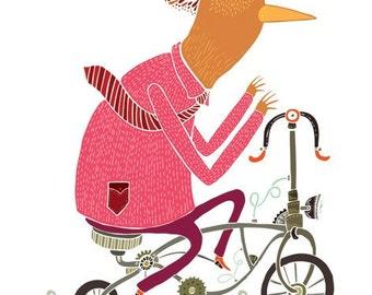 Paseo en bicicleta.