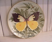 Butterfly-Postal Artists Series of Plates-First Edition