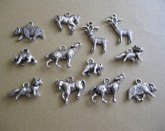 Collection of 12 American Wildlife Charms - C848