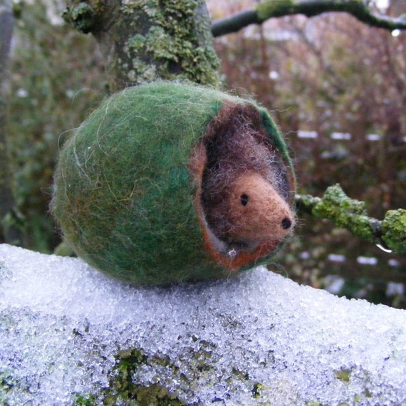 Needle Felted Hedgehog in His Home