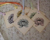 Rainbow MINI WATERLILY x6 - vintage style, shabby chic style hang tag, ephemera, gift tag - lotus, water garden, zen, happiness