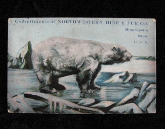 Compliments of Northwestern Hide & Fur Co. Minneapolis, MN        Vintage Postcard Advettisement