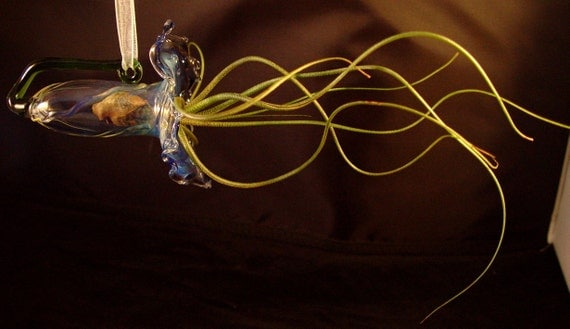 Handblown Glass Airplant Home   ////Free Shipping in the US//////////