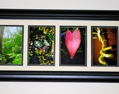 alphabet photography LOVE-color (framed)