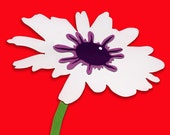 Daisy on Red - fine art print in 8 x 10 mat
