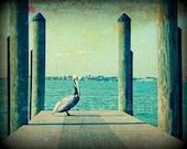 Pelican Walk Seascape Landscape Fine Art Photography 8x10 Print