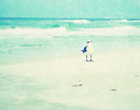 Seagull on the Beach 11x14 Photography Print Vintage Style Dreamy Light Blues Sand Waves