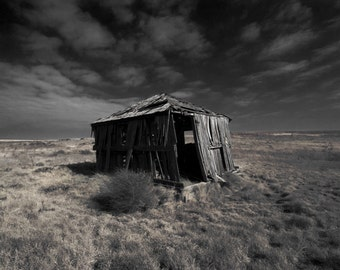 Texas Country Landscape Photograph - Gone With the Wind - tumbleweed shack wilderness 16x24