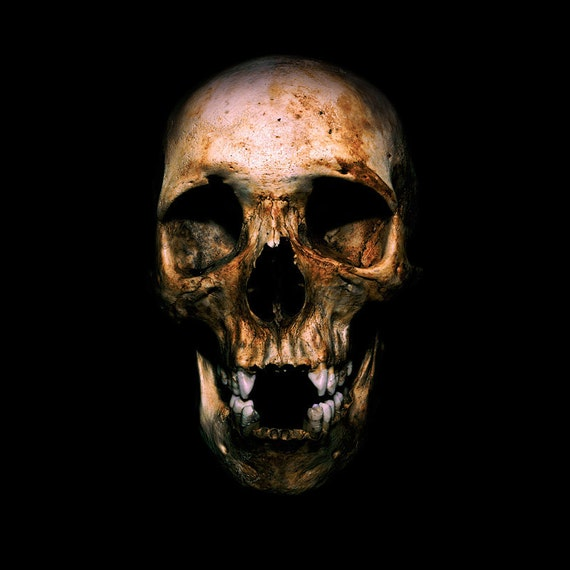 Skull of a Tibetan Youth - Dark Photograph - fine art photography skeleton bone spooky 30x30