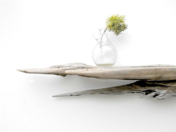 Driftwood Shelf No. 41