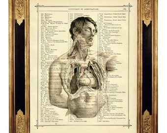 Anatomy open Torso Man Medical Heart - Vintage Victorian Book Page Art Print Steampunk